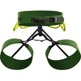 Arc'teryx FL-365 - Homme - XL vert